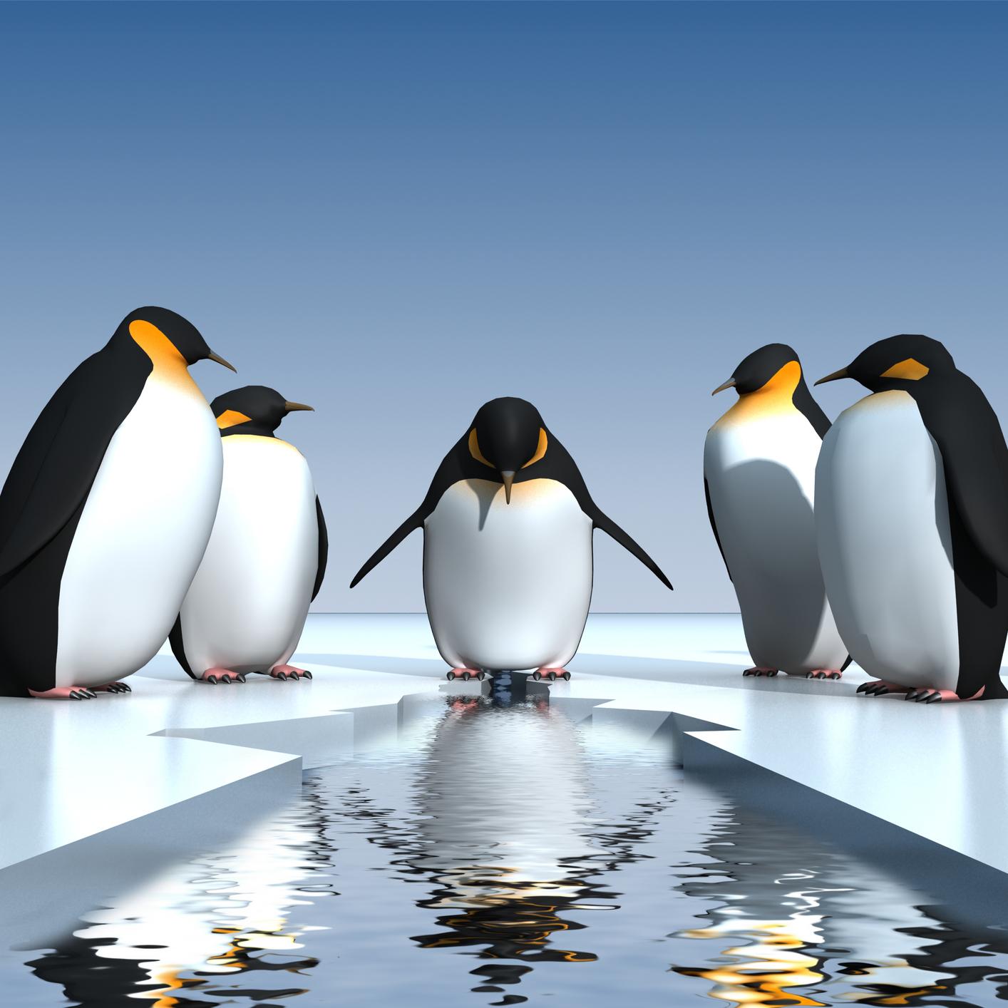 cute penguin love wallpaper