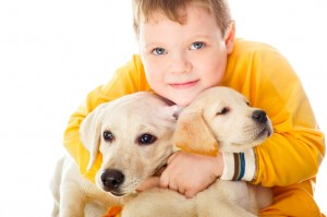 Handsome Young Boy Playing with His Dog Against White Background