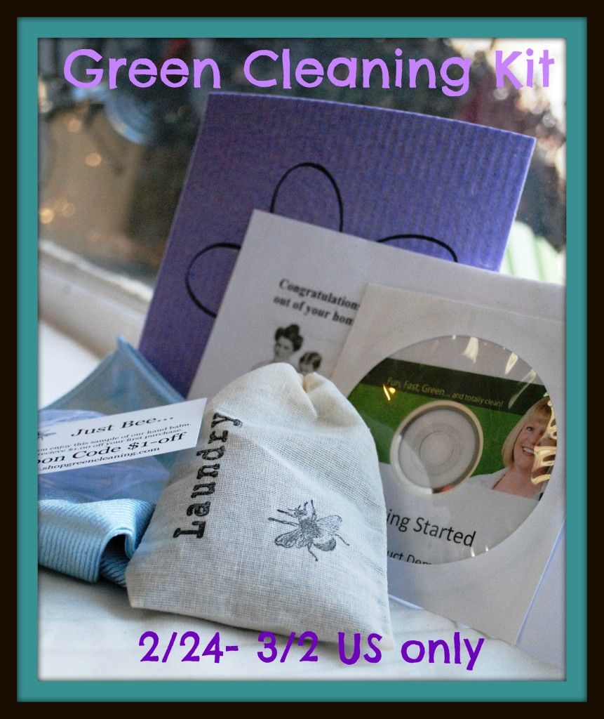 greencleaning kit