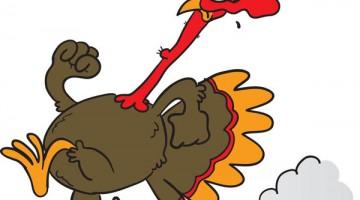 turkey_run