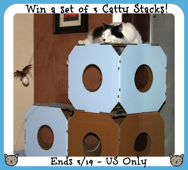 catty stacks 3button
