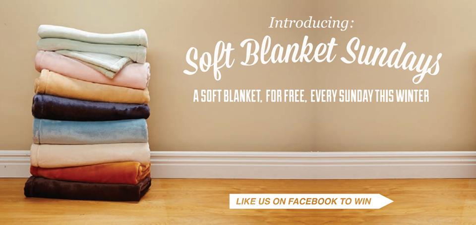 The Luster Loft Fleece Blanket Review