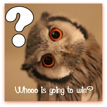 owl-question win