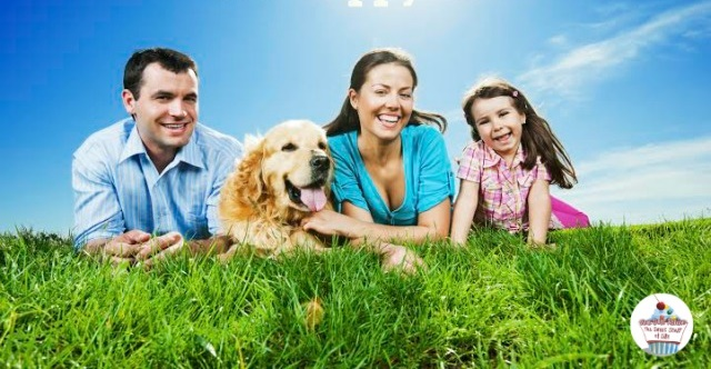 4 Ways to Give Your Family Pet the Longest Life Possible