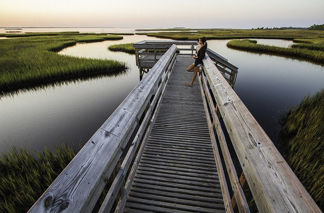 100% All-Natural Vacation Destination: Gulf County, Florida!