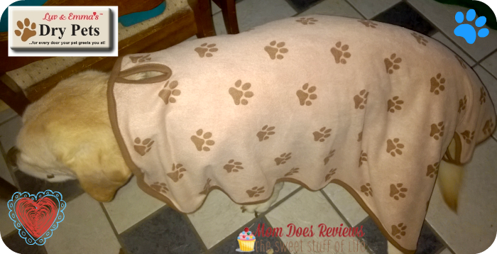 Luv & Emma Dry Pets Microfiber Towel #petpalooza #review