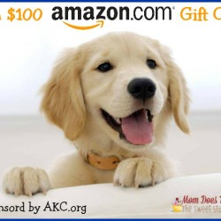 akc amazon puppy giveaway