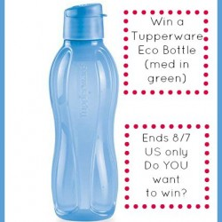 tupperware eco bottle med win