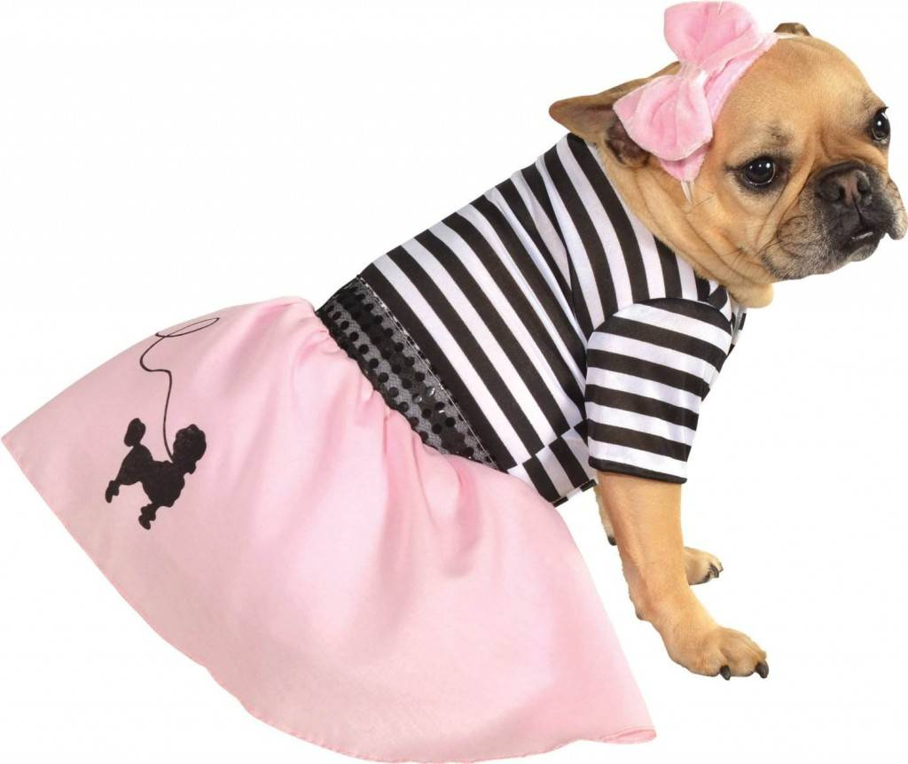 20 Halloween Costumes for Dogs & Cats #Halloween #Pets -