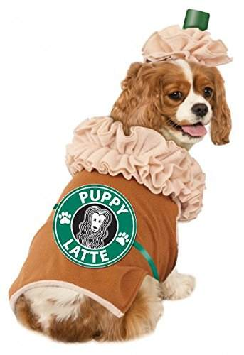 Image result for puppy latte dog costume