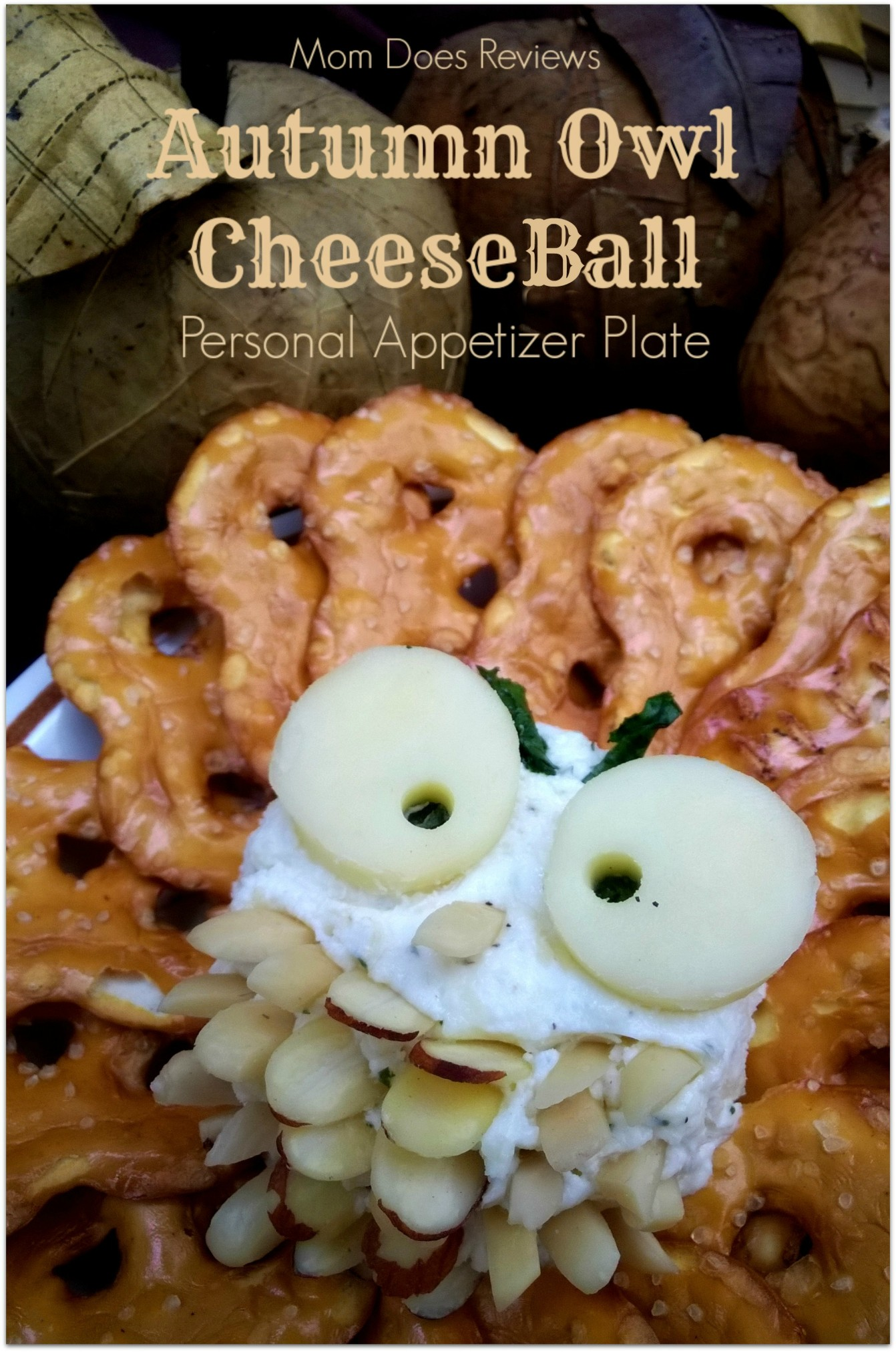 Owl Cheese Ball #Thanksgiving #Autumn #Appetizer #CheeseBall #Owls #OwlLove & Autumn Owl Cheese Ball ~ Personal Appetizer Plate #Recipe -