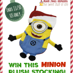 minion stocking win