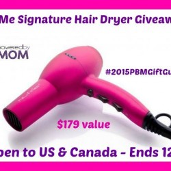 nume blow dryer win