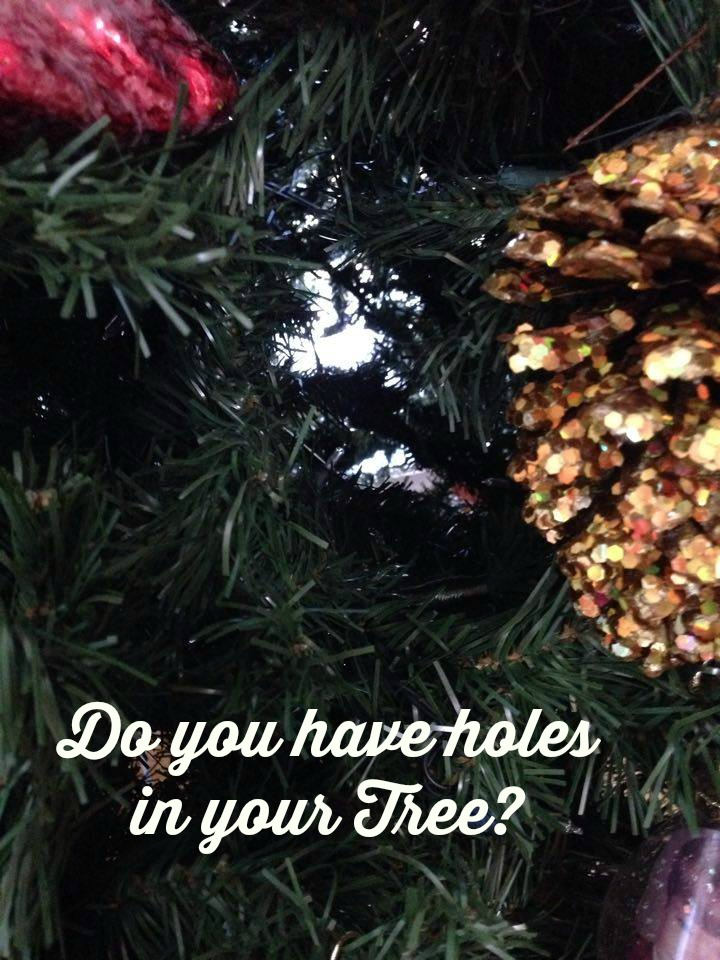holes in your tree