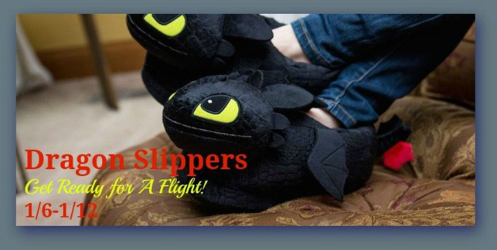 dragon slippers-1