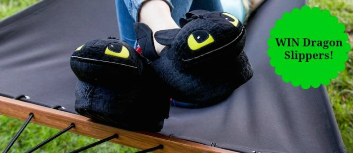 dragon slippers - 2