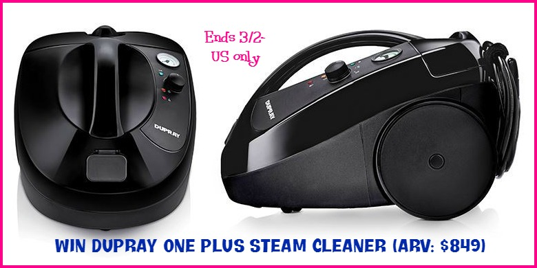 dupray-steam-cleaner (1)