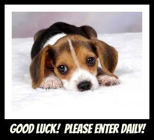 sad pup GOOD LUCK!