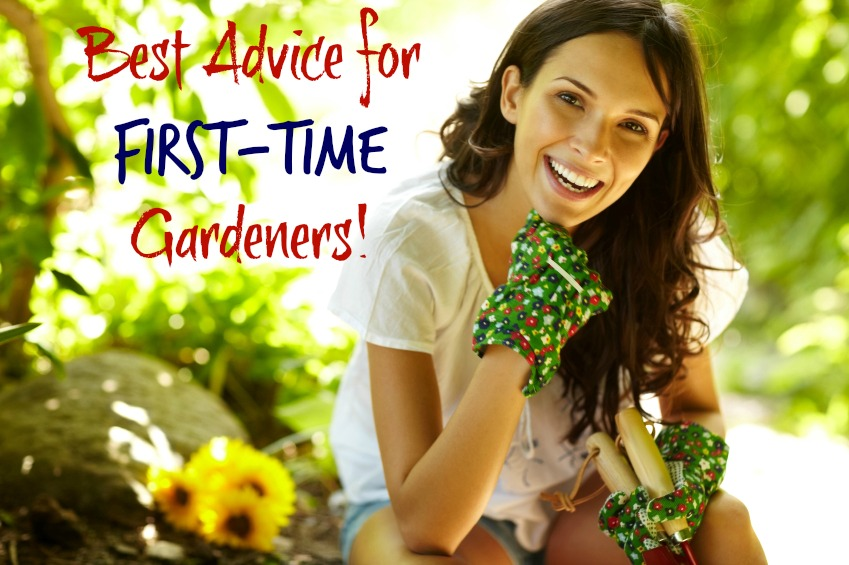 first time gardeners