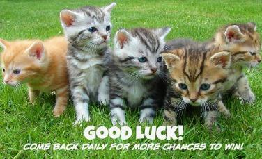 good luck kittens