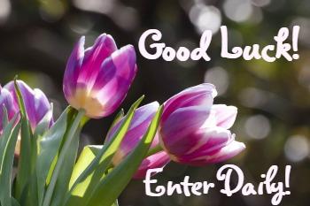 good luck tulips