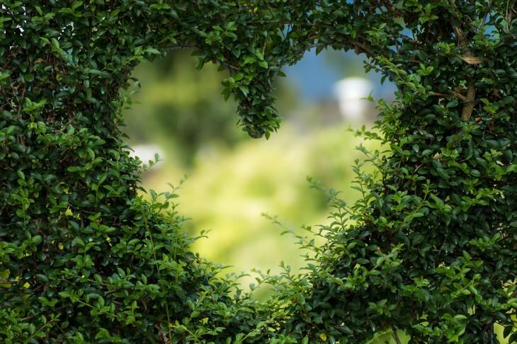 heart-1192662_1280
