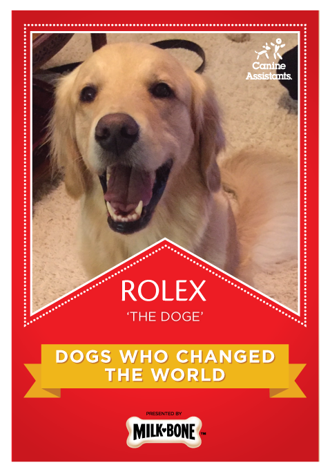 MILK-BONE'S 2016 'Dogs Who Changed the World'