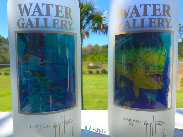 Water Gallery-review-3