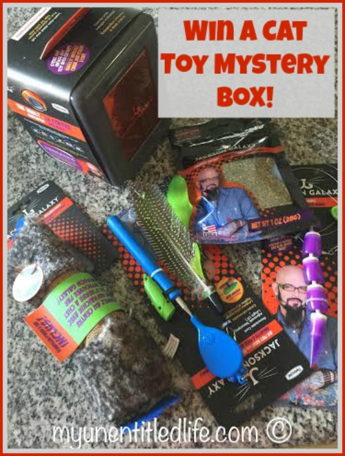 Win a jackson galaxy cat toy mystery box us ends 4 19 for Jackson galaxy pet toys