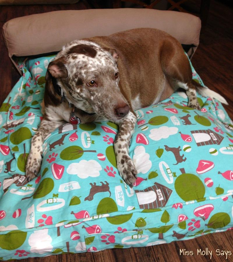 Molly Mutt Dog Bed Reviews