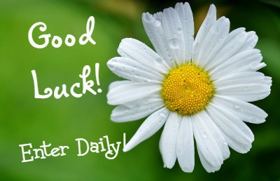Good-luck-daisy