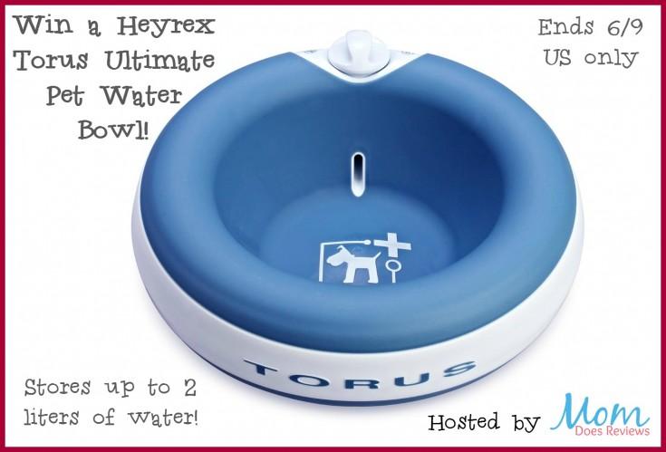 torus-blue-waterbowl-win