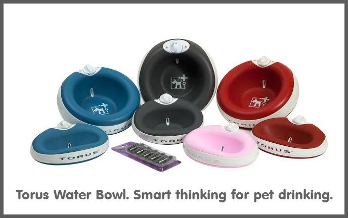torus-bowls-colors1