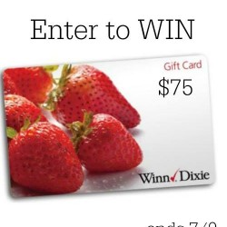 winn-dixie-win