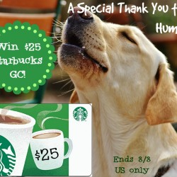 Dog-starbucks25