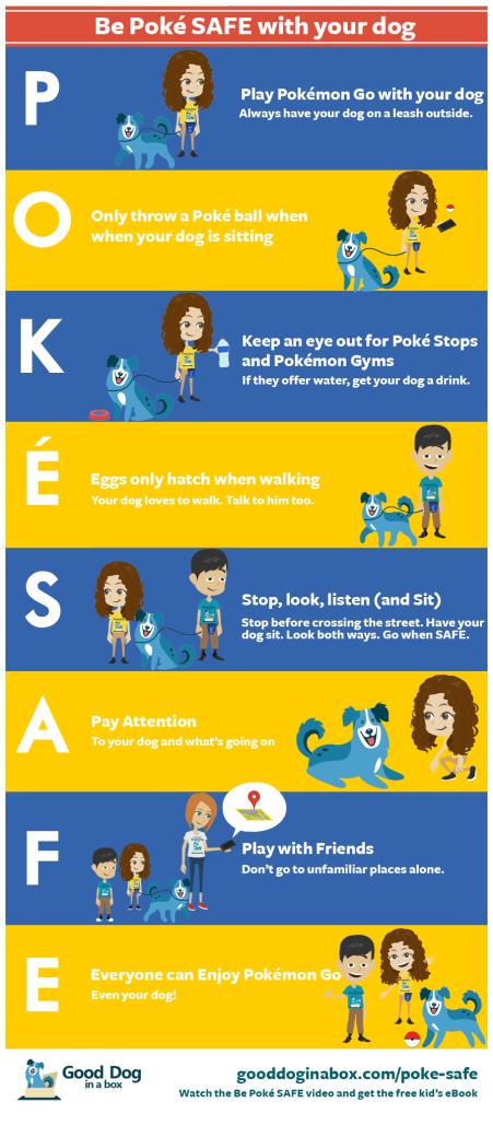 be-pokemon-go-safe-for-kids-dogs4-border-451x1030