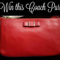 coach-purse-win815