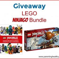LEGO-ninjago-win