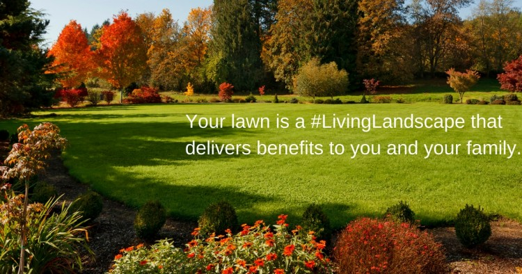 your-lawn-is-a-livinglandscape-that-delivers-benefits-to-you-and-your-f