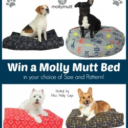 molly-mutt-giveaway-button