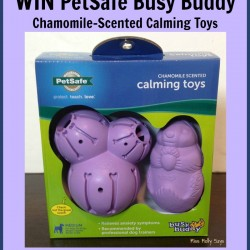 petsafe-busy-buddy-chamomile-scented-calming-toys-giveaway-button
