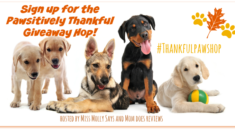#BloggersWanted! Sign up for Pawsitively Thankful Giveaway Hop! #Thankfulpawshop