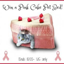 win-pet-cake