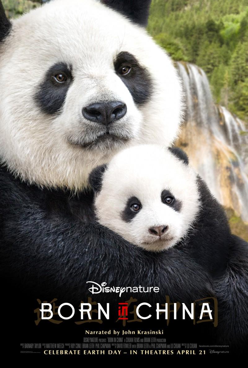 borninchina-poster