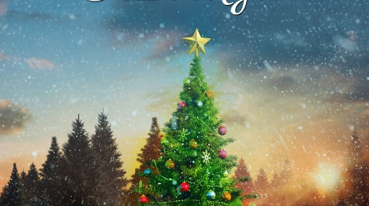 Mistletoe at Moonglow #bookreview