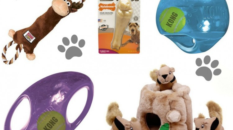 15 Great Gifts Under $15 for your Pups! #ad