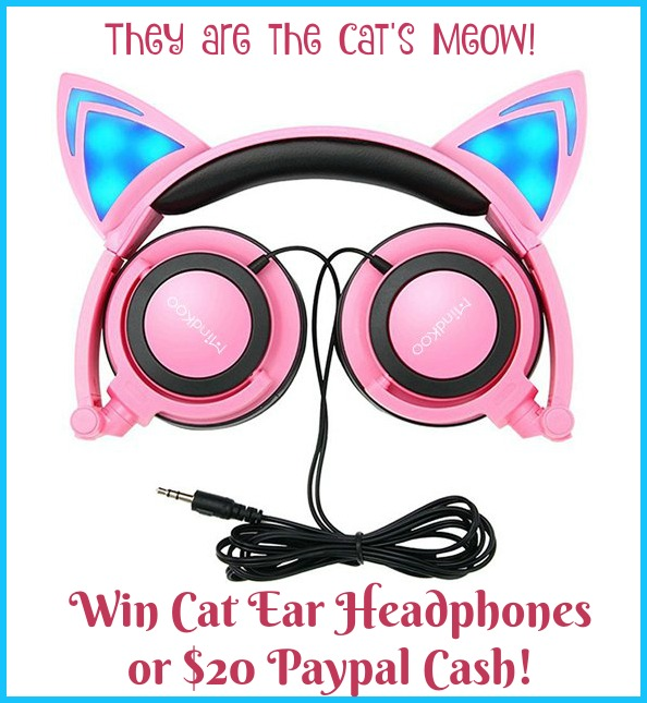 win-cat-ear-headphones