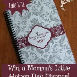 win-mlh-planner