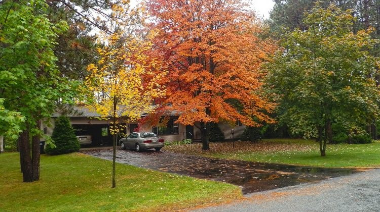 Tips on How to Enhance the Beauty and Landscape of Your Home