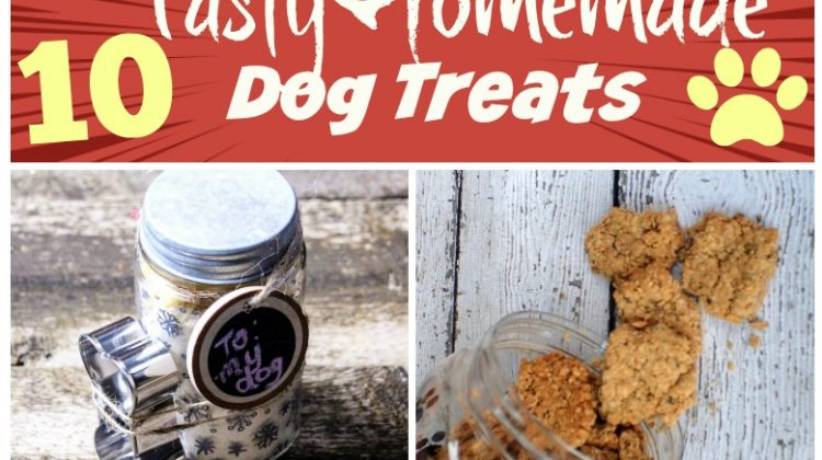 10 Tasty Homemade Dog Treats from MissMollySays